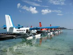 maldiv1