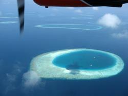 maldiv2